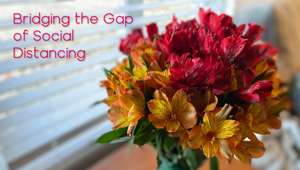 Photo of flowers with the words: Bridging the Gap of Social Distancing